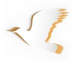 Bird-Graphic