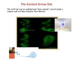 """Il sito Ancient Arrow è una """"capsula temporale"""" sotterranea scavata all'interno di una parete rocciosa del Chaco Canyon, New Mexico."""